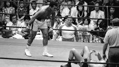 Кто сильнее: боксер или борец