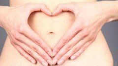 Какое строение у кишечника