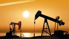 Как образовалась нефть