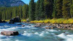 Откуда берут начало горные реки