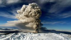 Что такое экологический риск