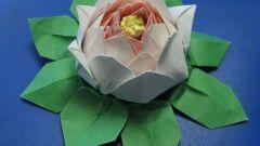 Как сделать лотос из модулей оригами