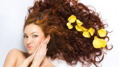 Жирные волосы: уход и способы укладки