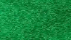 С какими цветами сочетается зелёный