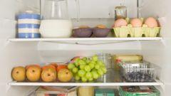 Как правильно размещать продукты в холодильнике