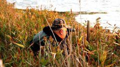 Как охотиться на уток