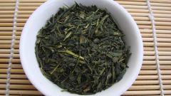 Полезные свойства чая сенча