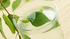 Как заготавливать березовый сок