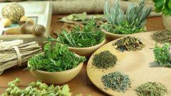 Как остановить рост миомы травами
