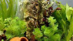 Как сделать распылитель воздуха для аквариума