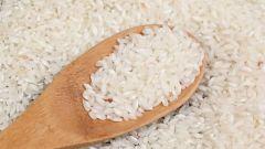 Что делать, чтобы в рисе и муке не заводились жучки