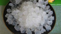 Как выращивают индийский морской рис