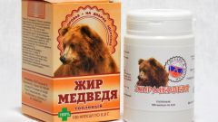 Как хранить медвежий жир