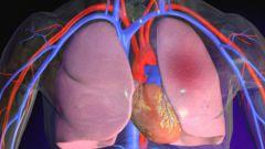 Доврачебная и врачебная неотложная помощь при отеке легких