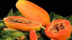 Фрукт папайя: полезные свойства и применение