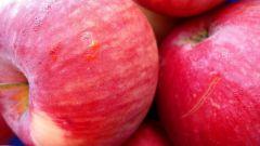 Сонник: к чему снится яблоко