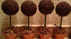 Как сделать дерево из кофейных зерен