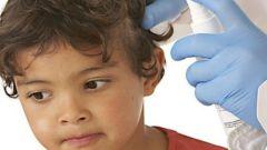 Почему у детей бывают вши на голове