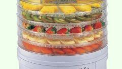Сушилки для овощей и фруктов: как выбрать и не ошибиться