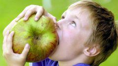 Для чего служат клыки, резцы и жевательные зубы
