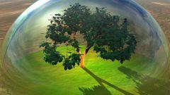 Биокосное вещество и его роль в составе и биосфере Земли