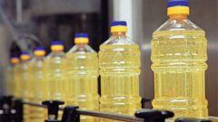 Почему подсолнечное масло получило популярность в России