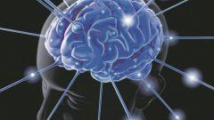 В какое время суток продуктивность памяти является наивысшей