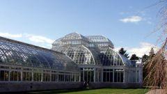 Сотовый поликарбонат: свойства и сферы использования