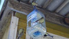 Как сделать скворечник из пластиковой бутылки
