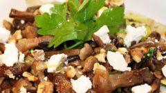 Вкусные блюда из опят: рецепты