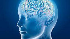 Как использовать свой мозг на все 100%