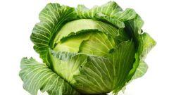 Какова пищевая ценность капусты
