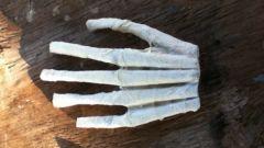 Как из бумаги сделать руку