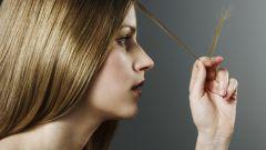 Как выбрать шампунь для секущихся волос
