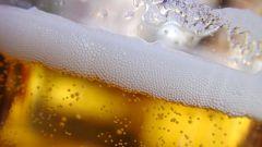 Как появилось пиво