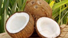 Что приготовить из кокоса