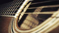Какие бывают виды гитар