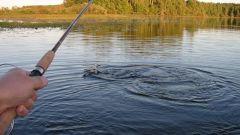 Какой ветер лучше для рыбалки
