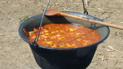 Meals on the campfire: what to cook