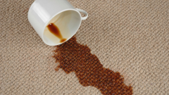 How you can quickly clean carpets and rugs with a short NAP
