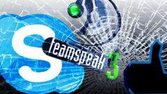 Что лучше Skype или TeamSpeak