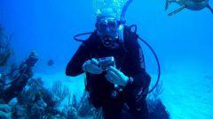 Как заняться подводной охотой в 2018 году