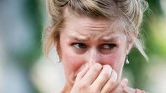 Нос как орган обоняния