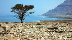 Самые известные мертвые водоемы мира