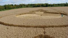 Кто рисует круги на полях