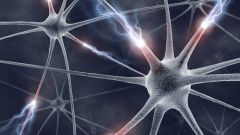 Что такое клетка как структурная единица