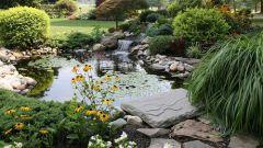 Как устроить настоящий пруд и ручей на участке