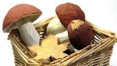Как сделать грибы из бумаги своими руками