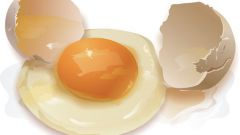 Где больше белков: в желтке или в белке