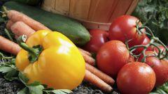 Перегной - лучшее удобрение для огорода